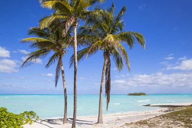 BA01291 Bahamas, Abaco Islands, Great Abaco, Beach at Treasure Cay