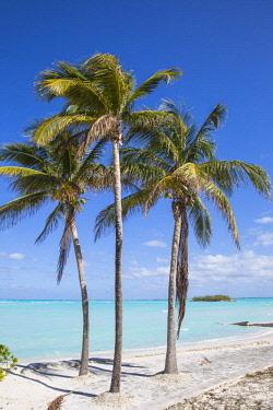 BA01292 Bahamas, Abaco Islands, Great Abaco, Beach at Treasure Cay