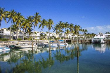 BA01302 Bahamas, Abaco Islands, Great Abaco, Treasure Cay, Treasure Cay Beach, Marina & Golf Resort