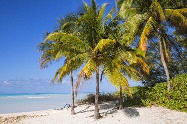 BA01303 Bahamas, Abaco Islands, Great Abaco, Beach at Treasure Cay