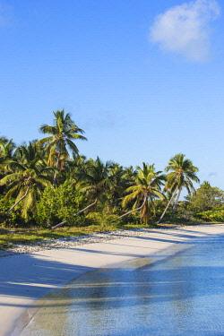 BA01217 Bahamas, Abaco Islands, Elbow Cay, Tihiti beach