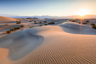 USA12420AW Mesquite Flat Sand Dunes, Death valley National park, California, USA