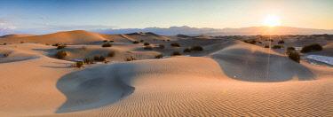 USA12421AW Mesquite Flat Sand Dunes, Death valley National park, California, USA
