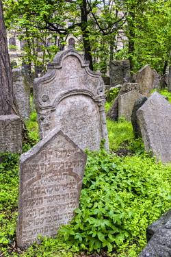 CZE1791AW Gravestones in the Old Jewish Cemetery, Prague, Bohemia, Czech Republic