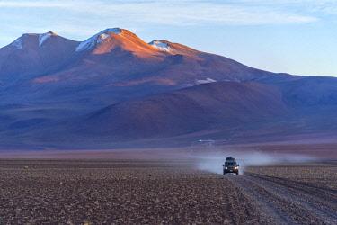 BOL8626AW South America, Andes,Altiplano, Bolivia