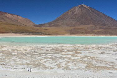 BOL8635AW South America, Andes, Altiplano, Bolivia, Laguna Verde