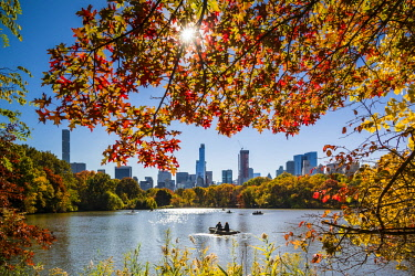 US61534 USA, New York, New York City, Central Park, rowing on The Lake, autumn