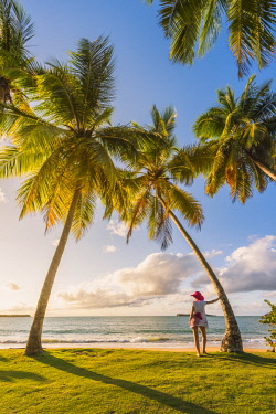 DMR0045AW Playa Moron, Las Terrenas, Samana Peninsula, Dominican Republic. Woman admiring the sunset on a palm-fringed meadow (MR).