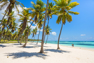 DMR0112AW Canto de la Playa, Saona Island, East National Park (Parque Nacional del Este), Dominican Republic, Caribbean Sea.