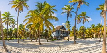 DMR0125AW Canto de la Playa, Saona Island, East National Park (Parque Nacional del Este), Dominican Republic, Caribbean Sea.
