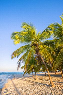 DMR0128AW Mano Juan, Saona Island, East National Park (Parque Nacional del Este), Dominican Republic, Caribbean Sea.