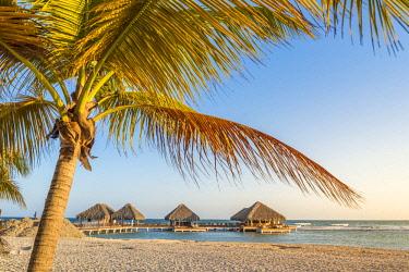 DMR0130AW Juan Dolio, San Pedro de Macoris province, Dominican Republic. Bungalows on the beach in Playa Real.