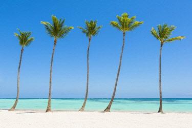 DMR0135AWRF Juanillo Beach (playa Juanillo), Punta Cana, Dominican Republic. Palm-fringed beach.