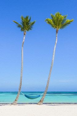DMR0144AWRF Juanillo Beach (playa Juanillo), Punta Cana, Dominican Republic. Empty hammock on a palm-fringed beach.