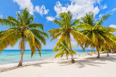 DMR0155AWRF Mano Juan, Saona Island, East National Park (Parque Nacional del Este), Dominican Republic, Caribbean Sea.
