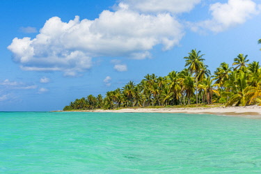 DMR0163AWRF Canto de la Playa, Saona Island, East National Park (Parque Nacional del Este), Dominican Republic, Caribbean Sea.