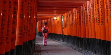JP04092 Japan, Kyoto, Fushimi Inari Taisha Shrine, Tunnel of Torii Gates
