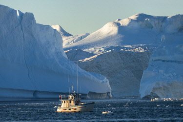 GRN1282 Icebergs calved from Jakobshavn Glacier floating in Disko Bay, Ilulissat, West Greenland