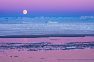 GRN1352 Moon set and sunrise over the Inuit settlement of Oqaatsut, West Greenland