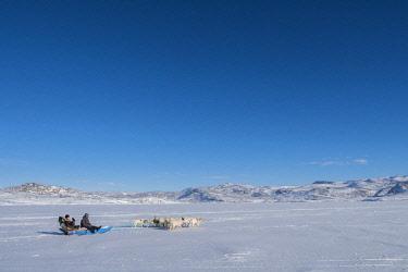 GRN1362 Dogsledding, Oqaatsut, West Greenland
