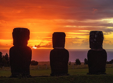 CHI10704AW Moais in Ahu Akivi at sunset, Rapa Nui National Park, Easter Island, Chile