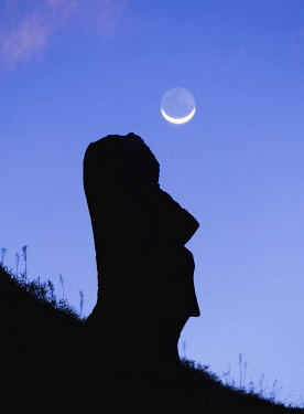 CHI10775AW Moai at the quarry on the slope of the Rano Raraku Volcano, Rapa Nui National Park, Easter Island, Chile