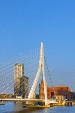 NL02295 Netherlands, South Holland, Rotterdam, Erasmusbrug, Erasmus Bridge