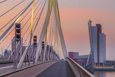 NL02299 Netherlands, South Holland, Rotterdam, Erasmusbrug, Erasmus Bridge