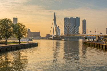 NL02322 Netherlands, South Holland, Rotterdam, Erasmusbrug, Erasmus Bridge and Wilhelminakade 137, De Rotterdam, The Rotterdam Building, Sunrise