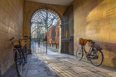 UK08132 UK, England, Cambridge, Clare College