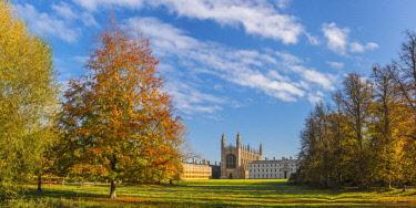 UK08146 UK, England, Cambridgeshire, Cambridge, The Backs, King's College, King's College Chapel