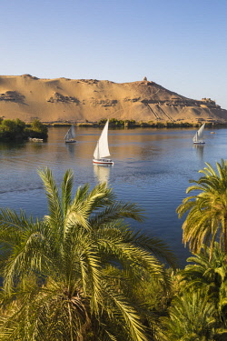 EG078RF Egypt, Upper Egypt, Aswan, Elephantine Island, View of river Nile and Tombs of the Nobles on the West Bank from the gardens of the Movenpick Resort