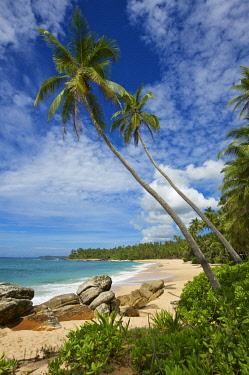 SRI2089AW Tangalle Beach, Sri Lanka