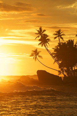 SRI2112AW Unawatuna Beach, Sri Lanka