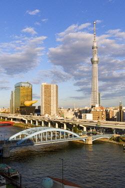 JP04116 Japan, Tokyo, city skyline and Skytree on the Sumida River