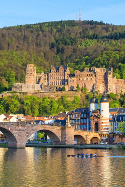 GER9916AW Germany, Baden-Württemberg, Heidelberg. Alte Brucke (old bridge) and Schloss Heidelberg castle on the Neckar River.