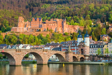 GER9917AW Germany, Baden-Württemberg, Heidelberg. Alte Brucke (old bridge) and Schloss Heidelberg castle on the Neckar River.