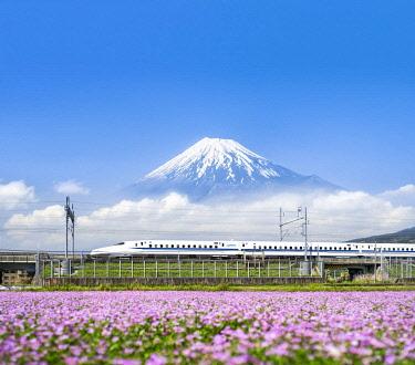 JAP1162AW Tokaido Shinkansen bullet train passing by Mount Fuji, Yoshiwara, Shizuoka prefecture, Japan