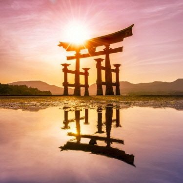 JAP1166AW The great Torii at sunset, Miyajima island, Hiroshima Prefecture, Japan