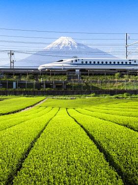JAP1168AW Tokaido Shinkansen bullet train passing by Mount Fuji, Yoshiwara, Shizuoka prefecture, Japan