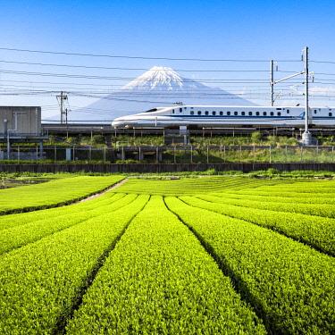 JAP1169AW Tokaido Shinkansen bullet train passing by Mount Fuji, Yoshiwara, Shizuoka prefecture, Japan