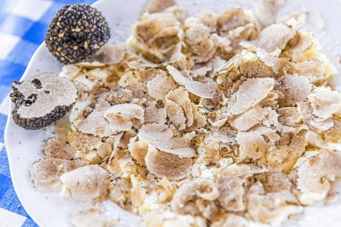 ITA11027AW italy, Piedmont, black summer truffles over fresh cheese