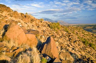 USA1282AW Landscape near Albuquerque, New Mexico, USA