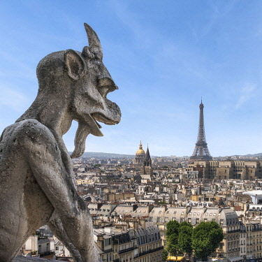 FRA10031AW Gargoyle statue on top of the Notre Dame Cathedral with Eiffel Tower in the distance, Paris, France