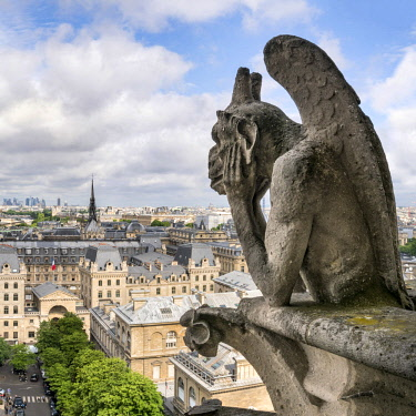 FRA9988AW Gargoyle statue on top of the Notre Dame Cathedral, Paris, France