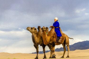 AS25TNO0064 Camel Caravan in the Dunes. Gobi Desert. Mongolia.