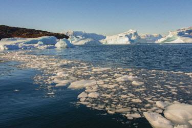 GR01IHO0022 Greenland. Scoresby Sund. Gasefjord. Krogen. Brash ice and icebergs.