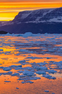 GR01IHO0033 Greenland. Scoresby Sund. Gasefjord. Sunset with icebergs and brash ice.