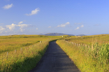 SCO34742AW Scotland, Western Isles, Barra. Single track road at Eoligarry in evening light.