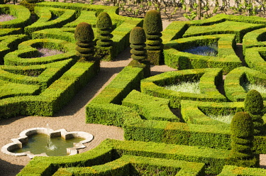 EU09RBS0223 Garden detail, Chateau de Villandry, Villandry, Loire Valley, France